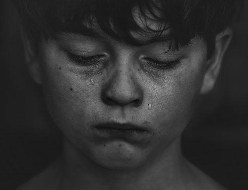 Taller de Inteligencia Emocional Infantil: la prevención del acoso escolar