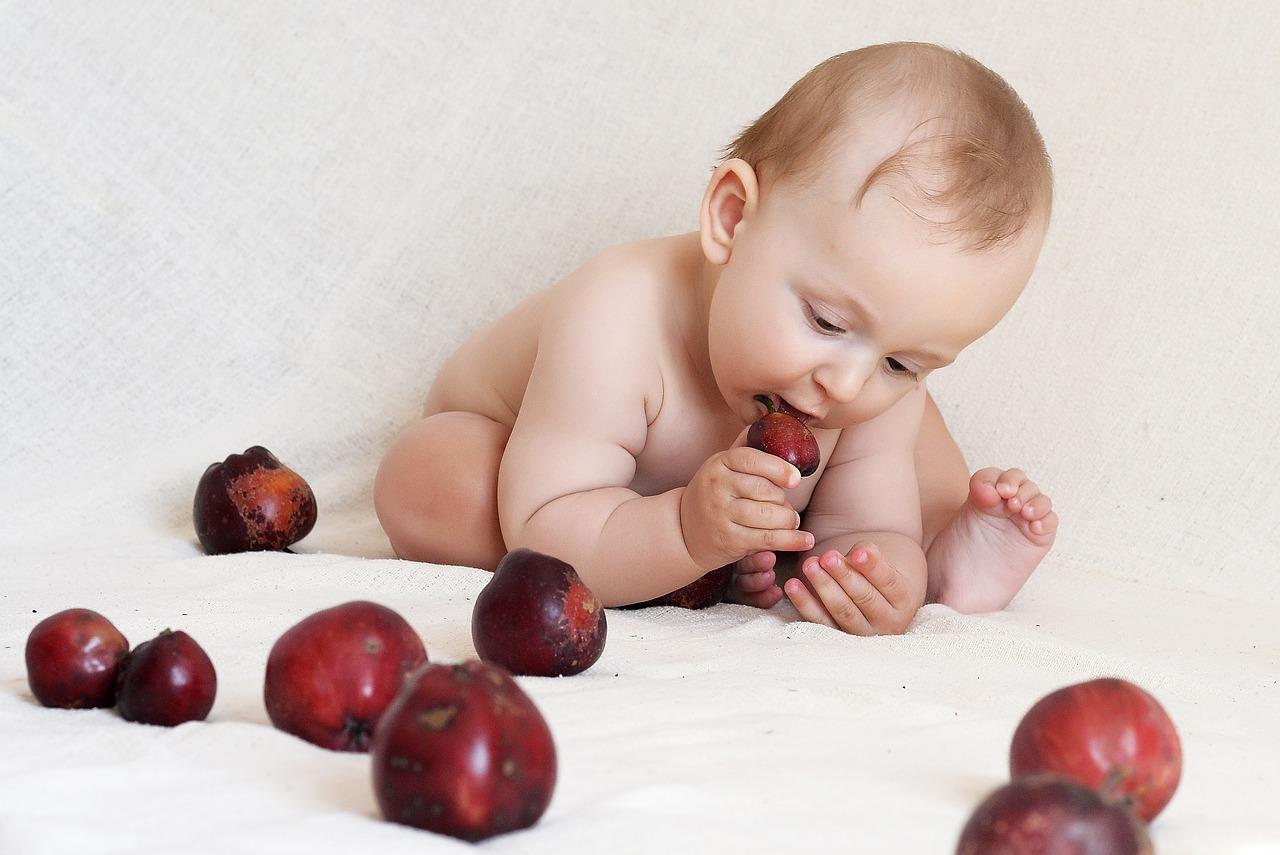 los niños deben comer alimentos duros y fibrosos